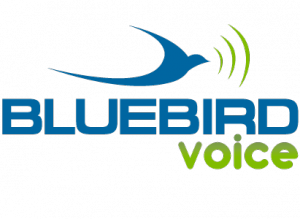 BB_voice_logo