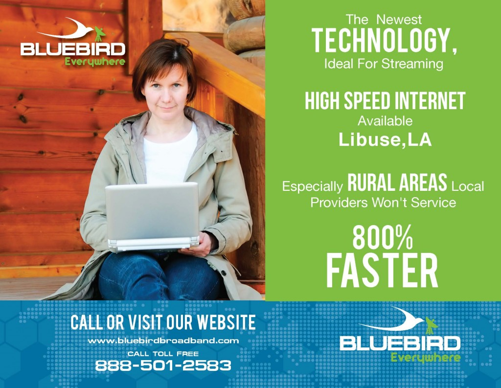 bluebird website