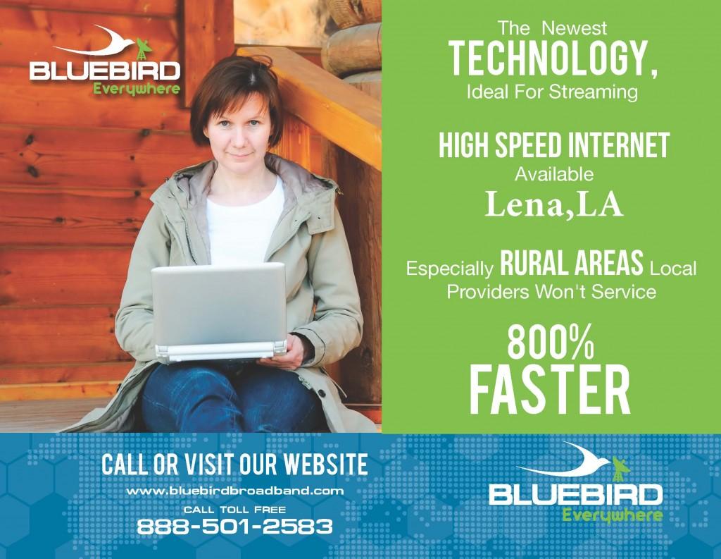 bluebird website8