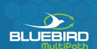 Bluebird_Multipath
